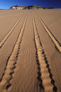 Off Road Vehicle Tracks in Sand Royalty Free Stock Photo