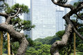 Office buildings surrounding Japanese garden Stock Photography