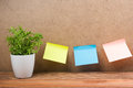 Office notes on board, copy space for ad text, plant flower, wooden grunge vintage table desk background. Royalty Free Stock Photo