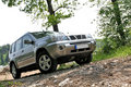 Offroader between trees Royalty Free Stock Photo