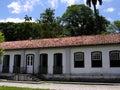 Ogród botaniczny tropical Zdjęcia Royalty Free