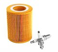 Oil filter and two spark plugs Royalty Free Stock Photo