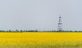 Oil and gas well rig outlined rural canola field on on an overcast day Stock Images