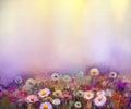 Oil painting flowers dandelion, poppy, daisy, cornflower in fiel Royalty Free Stock Photo