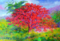 Oil painting flowers  landscape original colorful of peacock flower tree Royalty Free Stock Photo