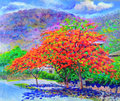 Oil painting landscape original colorful of peacock flower tree Royalty Free Stock Photo