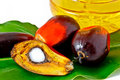 Oil palm fruit and palm olein oil Royalty Free Stock Photography