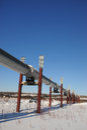 Oil pipeline in alaska Royalty Free Stock Photo