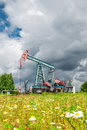 Oil pump jack in a field of chamomile flowers under dark cloudy skies Royalty Free Stock Photo