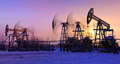 Oil pumps at sunset sky background panorama Stock Photography