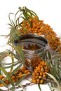Oil of sea-buckthorn berries. Stock Image