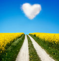 Oilseed and a heart shaped cloud Royalty Free Stock Image