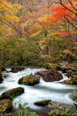 Oirase stream autumn colors of at aomori japan Stock Image