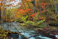Oirase stream autumn colors of at aomori japan Royalty Free Stock Photos