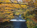 Oirase streams aomori japan beautiful very popular to both japanese tourist especially during autumn in Stock Images