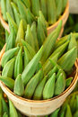 Okra for sale in a basket Royalty Free Stock Photo