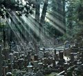 Okunoin Cemetery at Mount Koya Royalty Free Stock Photography