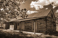 Old Abandon Log Cabin Royalty Free Stock Photo