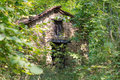 Old abandoned cottage in the woods Royalty Free Stock Photo