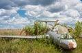 Old aircraft in elderberry bush, Aero L-29 Delfin Maya czechoslovakian military jet trainer Royalty Free Stock Photo