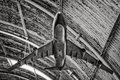 Old aircraft model hanging from a hangar ceiling Royalty Free Stock Images