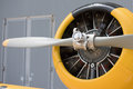 Old airplane iron propeller detail Royalty Free Stock Photo