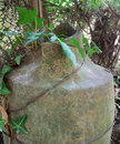 Old amphora decorative broken detail with ivy plant Stock Photo