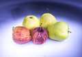 Old apples painted with light Royalty Free Stock Photo