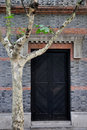 Old architecture door and phoenix tree Stock Images