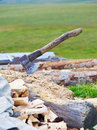 Old ax and firewood. Stock Images