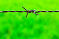 The old barbed wire Royalty Free Stock Photography