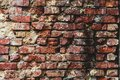 Old bare brick wall with red bricks close up Royalty Free Stock Photo