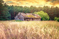 Old barn field Royalty Free Stock Photo