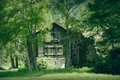 Old barn in saas ground between trees for effect some blur was added to the surrounding trees Royalty Free Stock Image