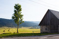 Old barn from stone and green tree nearby the road and field in mountains in croatia wood Royalty Free Stock Image
