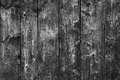 Old barn wood floor background texture natural wall pattern in black and white planks boards are very with a beautiful rustic Stock Images
