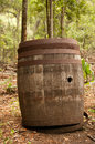 Old barrel an wooden in the forest Stock Photos