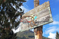 Old basketball hoop on the tree Royalty Free Stock Image