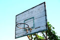 Old basketball hoop with vines Royalty Free Stock Photo