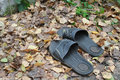 Old bedroom slippers on autumn foliage out of a premise Royalty Free Stock Image