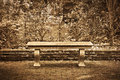 Old bench in formal English garden with sepia tone effect Royalty Free Stock Photo