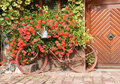 Old Bicycle as House decoration Royalty Free Stock Image