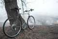 Old bike near the tree vintage in fog Royalty Free Stock Photo