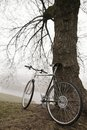 Old bike near the tree vintage in fog Royalty Free Stock Photos