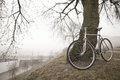 Old bike near the tree vintage in fog Stock Image