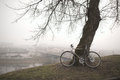 Old bike near the tree vintage in fog Royalty Free Stock Images