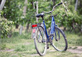 Old bike in the orchard bicycle green spring Royalty Free Stock Photo