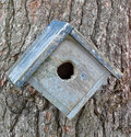 Old birdhouse on a tree close up of an and weathered wooden Stock Photos