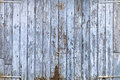 Old blue door grunge wood panels of wide light Royalty Free Stock Images