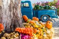 Old truck with vegetables and fruit parked next to tree Royalty Free Stock Photo